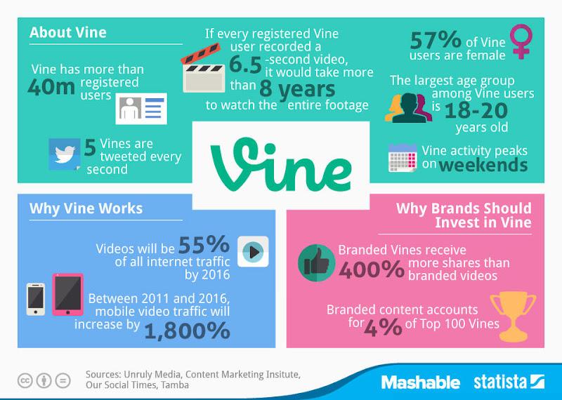 圖六 Vine的各方面數值