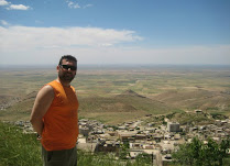 Mardin Mezopotamya ovası ne de harika görünüyor.jpg