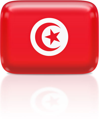 Tunisian flag clipart rectangular