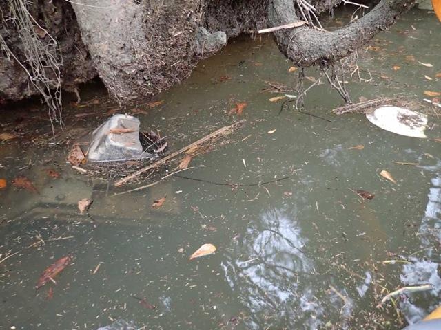 Trash Trap Floating Debris Collector