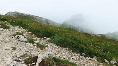 Auf dem Gipfel vom Großer Daumen im Nebel Hinterstein Allgäu