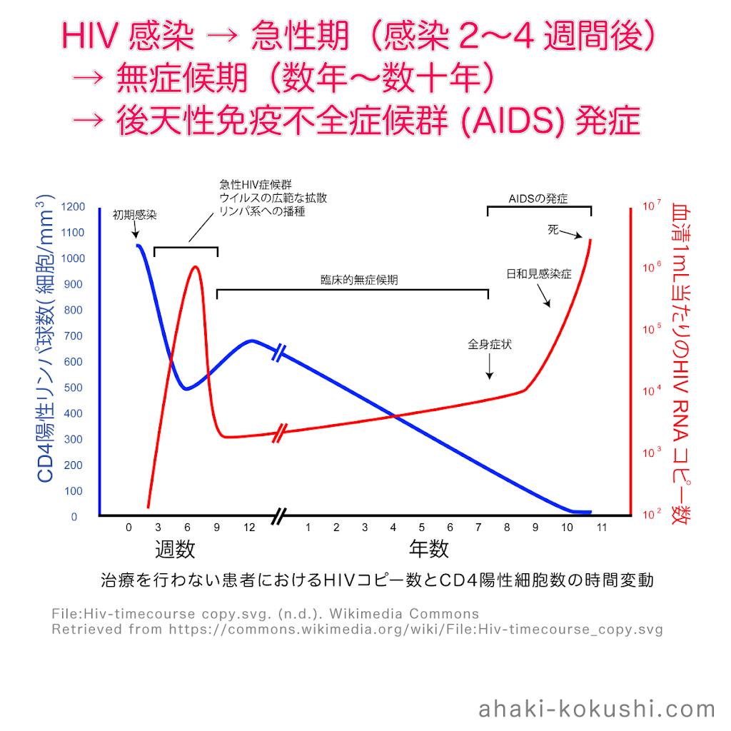HIV感染・急性期・無症候期・後天性免疫不全症候群-AIDS.png