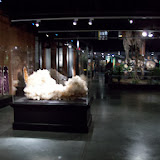Houston Museum of Natural Science, Sugar Land - 114_6675.JPG
