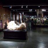 Houston Museum of Natural Science, Sugar Land - 114_6675.JPG