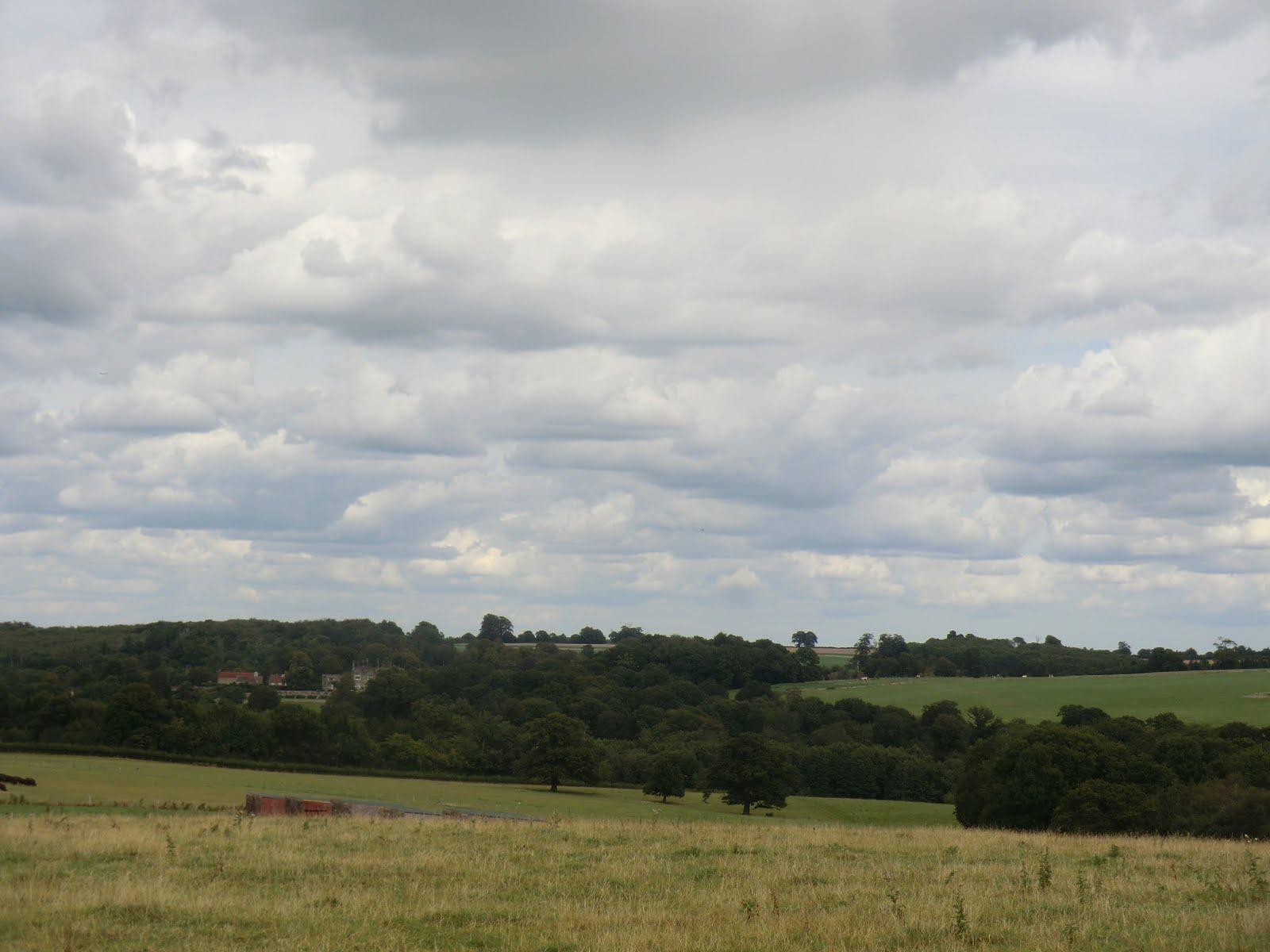CIMG4565 Distant view of Buckhurst Park