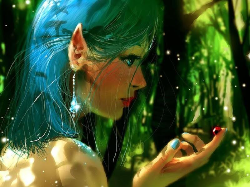 Amazing Sorceress Of Heaven, Elven Girls 2