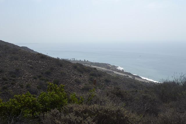 east along the coast