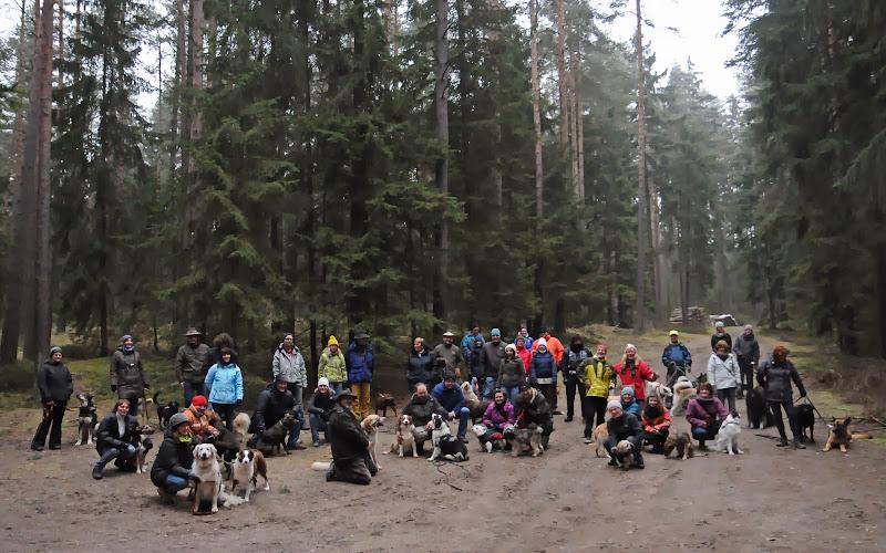 20140101 Neujahrsspaziergang im Waldnaabtal - DSC_9805-1.JPG