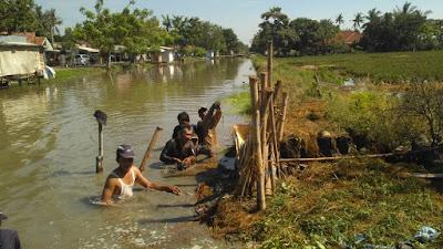 Dikabarkan Ada Tanggul Jebol di Batujaya