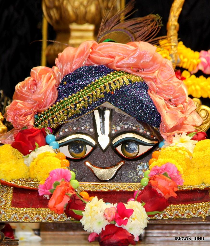 ISKCON Juhu Sringar Deity Darshan on 31st Dec 2016 (10)