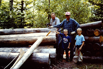 Photo: Getting ready to skid logs up onto the wall.