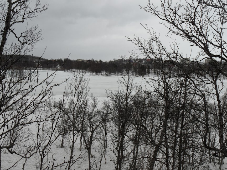 Norvège mars 2014 SAM_1525