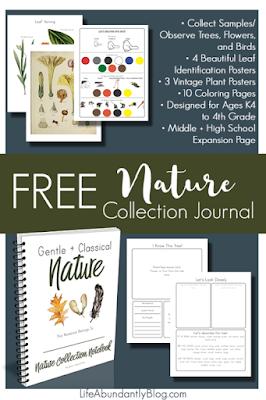 free nature journal printables