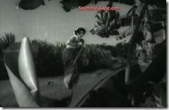 Kanchana Hot 86