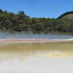 Rotorua - Wai-O-Tapu - Thermal Wonderland