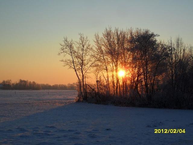 Winterkiekjes Servicetv - Ingezonden%2Bwinterfoto%2527s%2B2011-2012_84.jpg