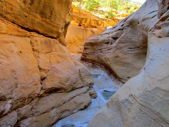 Blind Canyon narrows