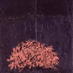 Notte sull'albero | 1981