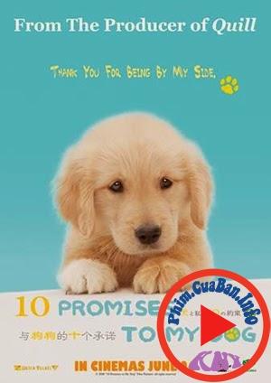 10 Promises To My Dog - 10 lời hứa dành cho chú chó của tôi