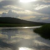 Le marais de Kaw (Guyane). 18 novembre 2011. Photo : J.-M. Gayman