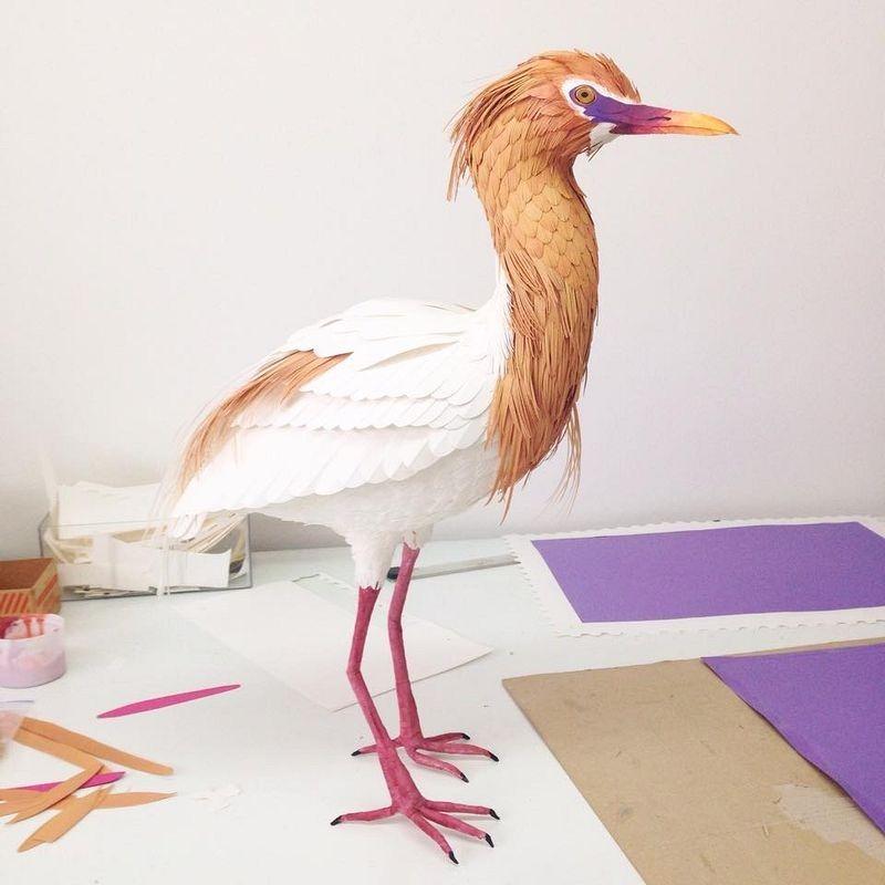 diana-beltran-herrera-birds-11