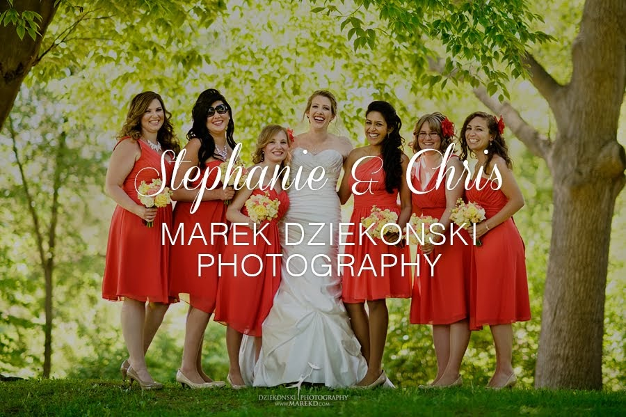 Stephanie & Chris by Dziekonski Photography