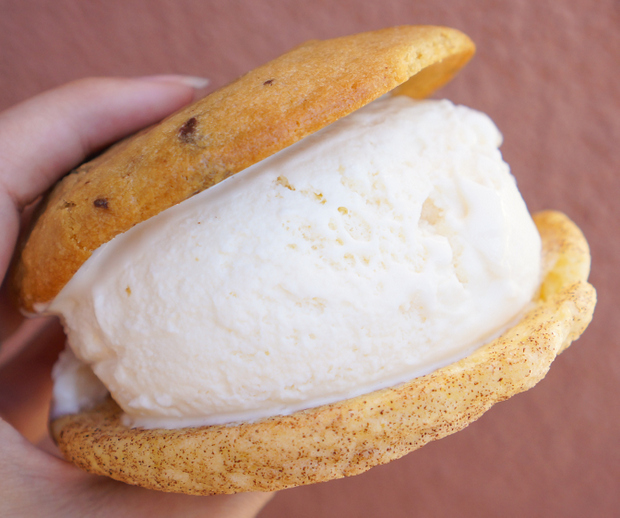 photo of Chocolate Chip Cookie, Snickerdoodle, Young Coconut Ice Cream