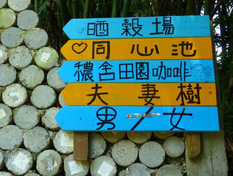 Taipei. Promenade de santé au départ de la station de métro DAHU       06/13 - P1330344.JPG