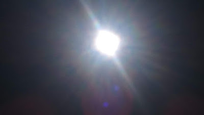 ヴィーガン逗子太陽3DSC_0334.JPG