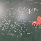 Introduction of Octopus (Jr. KG) 19.01.2016