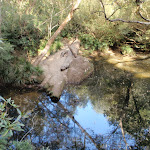 Kariong Brook pool (197124)