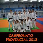 CAMPEONATO PROVINCIAL 2013