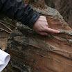 Kallioperägeologian kenttäkurssi, kevät 2012 - Kallioper%25C3%25A4kenttis%2B071.JPG