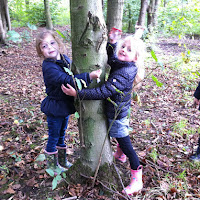 De bomen worden geknufeld door de Eekhoorntjes
