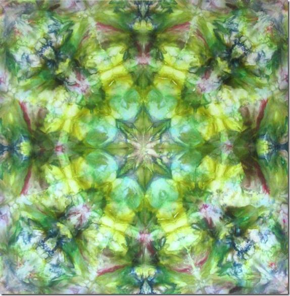 Iris Spring 40wxw0h