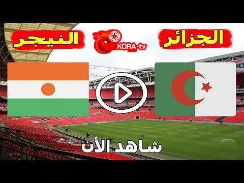 الجزائر والنيجر