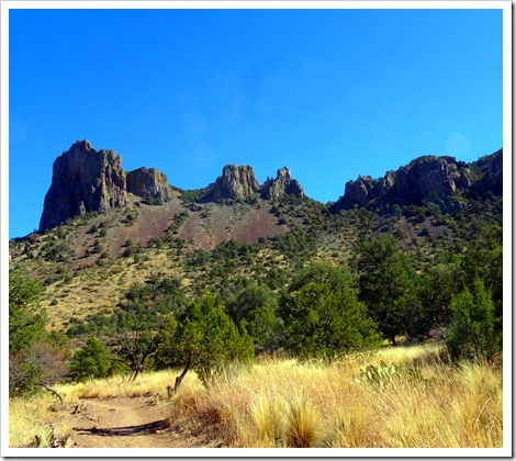 CHISOS BASIN…PINNACLES TRAIL