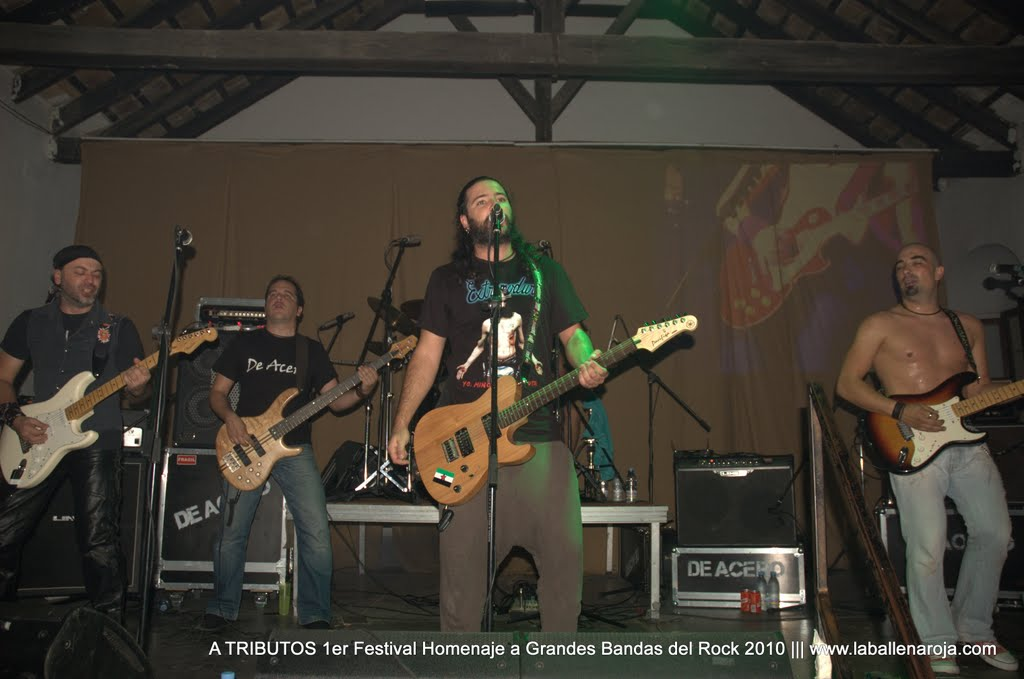 A TRIBUTOS 1er Festival Homenaje a Grandes Bandas del Rock 2010 - DSC_0132.jpg