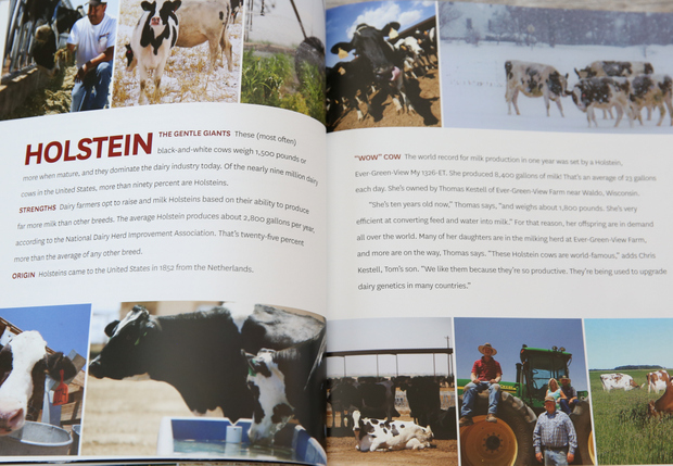 photo of the inside of the cookbook