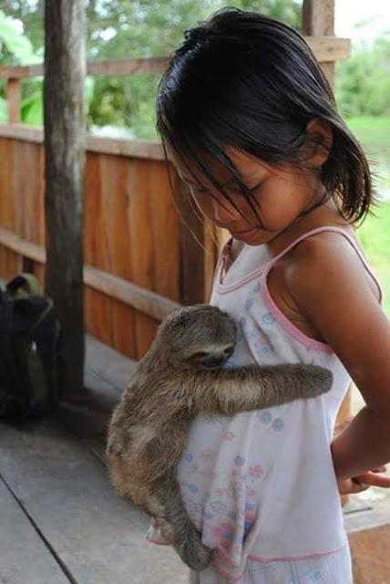 Human Animal Love For Instagram