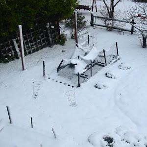 OR: Paradise Lane Landscape Snow Pix - 12/29/2003