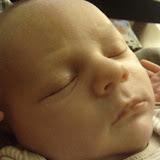Meet Marshall! - IMG_20120613_204333.jpg