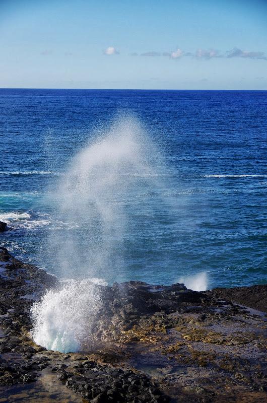 06-27-13 Spouting Horn & Kauai South Shore - IMGP9756.JPG