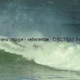 _DSC7533.thumb.jpg