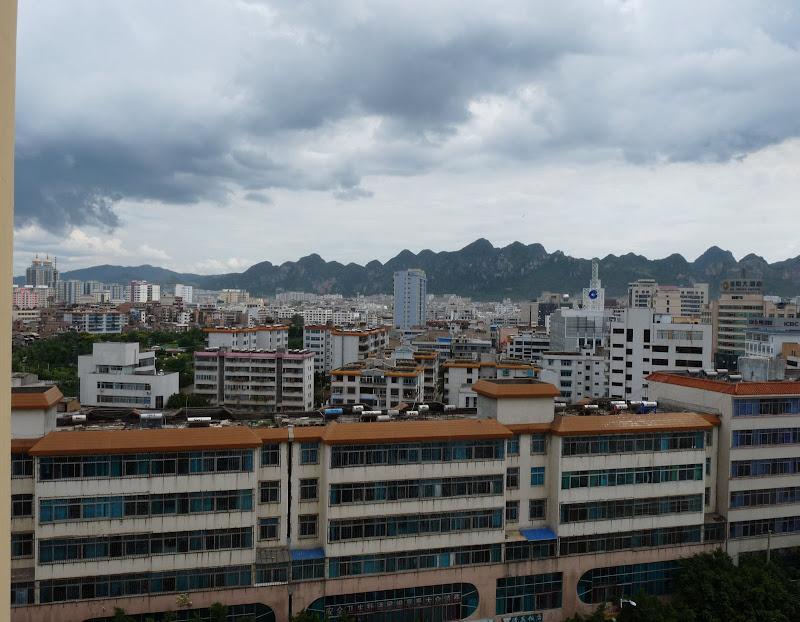 Chine.Yunnan Wen shan et BA MEI 1 - P1260788.JPG