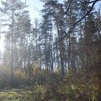 Озеро Круглое Подгоренский район 017.jpg