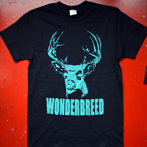 Teal Plasticharge print for Wonderbreed