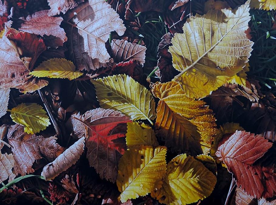 Pintura Piel de otoño de Lluis Sogorb