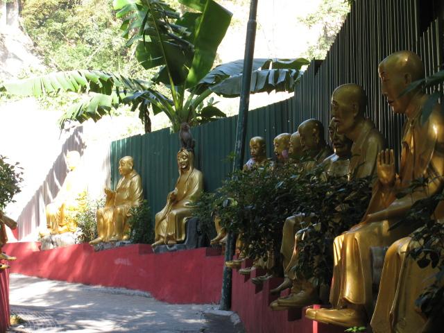 monkey on a buddha head