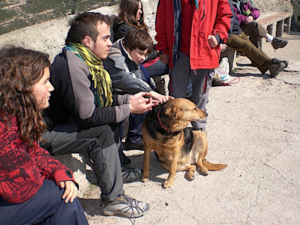 Sortida Sant Salvador de les espasses 2006 - CIMG8337.JPG